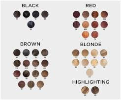 Dreamron Hair Color Chart 36 Unfolded Xp100 Hair Colour Chart