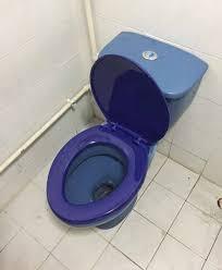 new toilet bowl seat