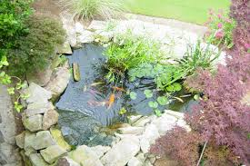 281 Best Garden Ponds Waterfalls And Features Images On Pinterest Small Ponds In Backyard