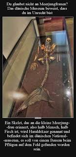 Du Glaubst Nicht An Meerjungfrauen Das Dänische Museum Lustige