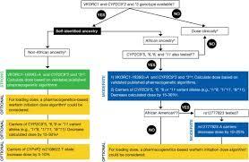 Warfarin Antibiotic Interaction Chart Warfarin Therapy And Vkorc1 And Cyp Genotype Medical