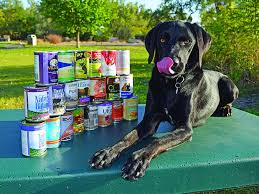 Dog Food Rating Chart 2013 Buying The Best Canned Dog Food The New Approved Wet Dog