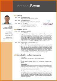 Curriculum Vitae Professional Resume Example Standard Professional