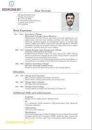 Example Cv Pdf Beautiful Resume Cv Examples Pdf Choose Example A