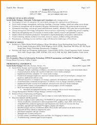 Summary For Resume Example Executive Summary Resume Samples Fresh 100 Executive Summary Example 92