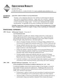 Technical Designer Resumes Software Developer Resume Example