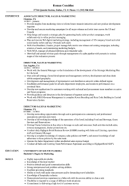 Director Sales Marketing Resume Samples Velvet Jobs