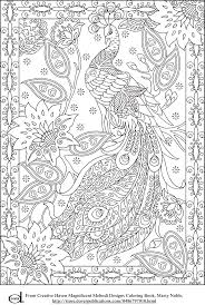 Free Printable Adult Coloring Pages Peacock