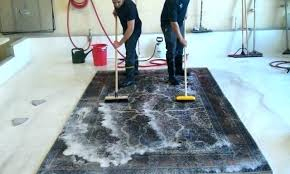 how to clean an area rug cat urine cleaning large rugs at home dry