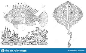 Coloring Page For Adult Colouring Book Underwater World With