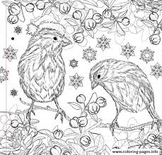 Small Picture Adult Coloring Pages To Print Cecilymae