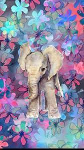 Hispter elephant