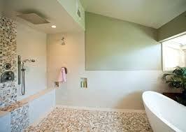 bathroom remodel san antonio. Wonderful Bathroom San Antonio Bathroom Remodeling Remodel Blue A Pictures Bath  Tx On Bathroom Remodel San Antonio I