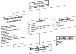 Orthopedic Assessment Chart Outcome Evaluation In Pediatric Orthopedics Sciencedirect