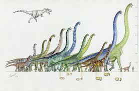 brachiosaurus size largest dinosaurs