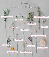 Maybe you would like to learn more about one of these? Seasonal Flower Guide Summer