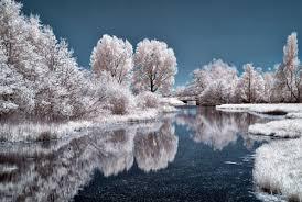 1000 Beautiful Winter Scenes Photos Pexels Free Stock Photos