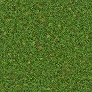 grass texture game. Fine Game Grass Texture For Game