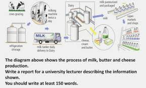 27 Proper Flow Chart Of Cheese