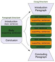 images about Essay writing on Pinterest Pinterest Great visual to explain the structure of a   paragraph essay