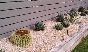 Small Picture Ideas Cactus Landscaping Ideas Inspiring Garden and Landscape