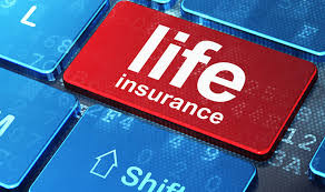 the 5 and affordable life insurance companies