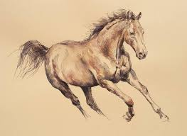 running horse drawing. Unique Drawing And Running Horse Drawing