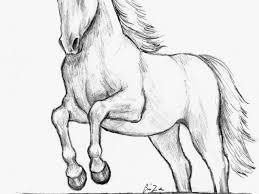 Cavallo Alato Da Colorare Az Colorare Con Immagini Di Animali Da