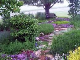 Small Picture Garden Design Garden Design with Cottage Garden Plants Spires