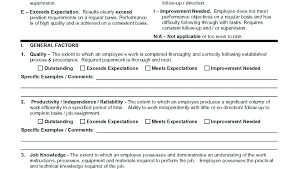 Day Employee Review Template Templates Design Form Free Job