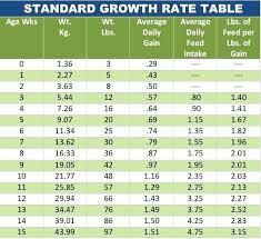 Show Pig Weight Gain Chart Pig Weight Calculator Carcass Abhi Shekraj Ravi