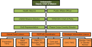 3 Pepfar Organization And Implementation Evaluation Of