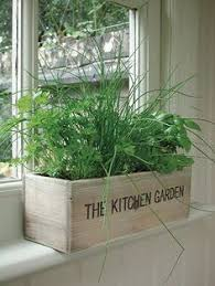 Kitchen Window Herb Garden, Indoor Wooden Box Planter & Seeds, Plant Pot Kit