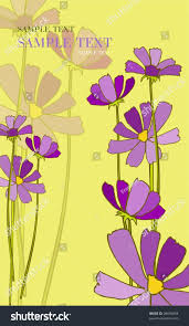 beautiful flowerses of the spring