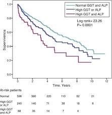 Ggt Level Chart High Levels Of Both Serum Gamma Glutamyl Transferase And