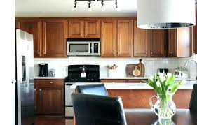 Update Oak Kitchen Cabinets Awesome Decorating