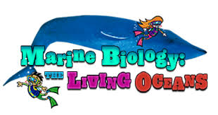 Image result for marine biology Clipart