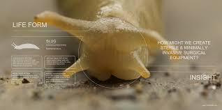 Diy Biomimicry Goggles Tim Mcgee Medium