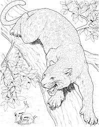 Small Picture Scary Panther Animal Coloring PagesPantherPrintable Coloring