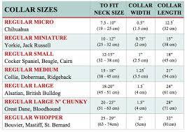 Regular Collection Size Charts Malulu