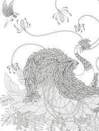 Coloring Pages Marvelous Caterpillar Coloring Pages Free Photo