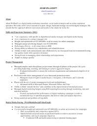 community manager resume social media manager resume social media - Digital  Media Planner Resume