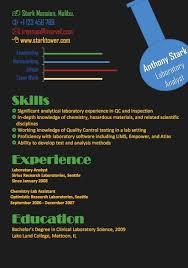 the best resume format   infographics vs formal resume    the best resume format   infographics vs formal resume template http