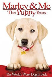 Marley and me summary of the book