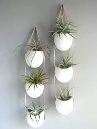 indoor wall planters wall mounted planters indoor terrarium design indoor wall mounted plant holders vertical wall