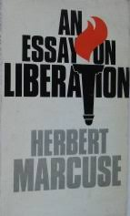 an essay on liberation an essay on liberation first edition jpg