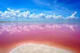 The Unbelievable <b>Pink</b> Lakes Of Las Coloradas In Mexico • Expert ...
