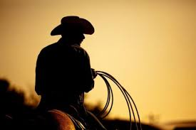 Cowboy coffee chew is a great tasting coffee blend to obtain you through those hard stopping times. Cannabis For Cowboys Marijuana Venture