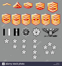 Marine Corps Rank Online Charts Collection