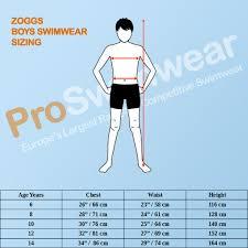 Zoggs Boys Grid Work Swim Shorts Blue